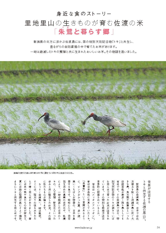 KaiHouse_28_24.jpg