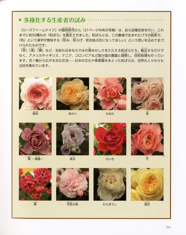 hanaiku006.jpg