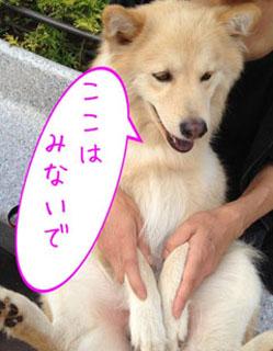 0226_rintaro2.JPG