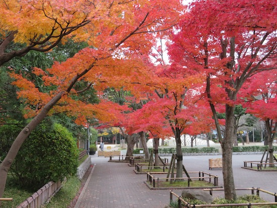 banshu_5136.JPG