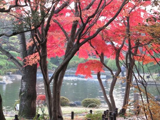 banshu_5150.JPG