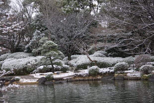 snow_3384.JPG