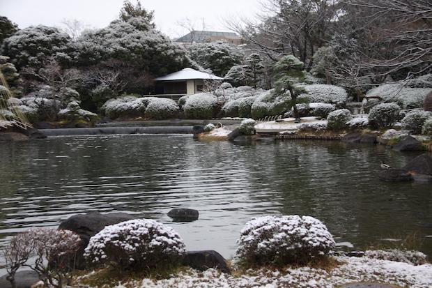 snow__3386.JPG