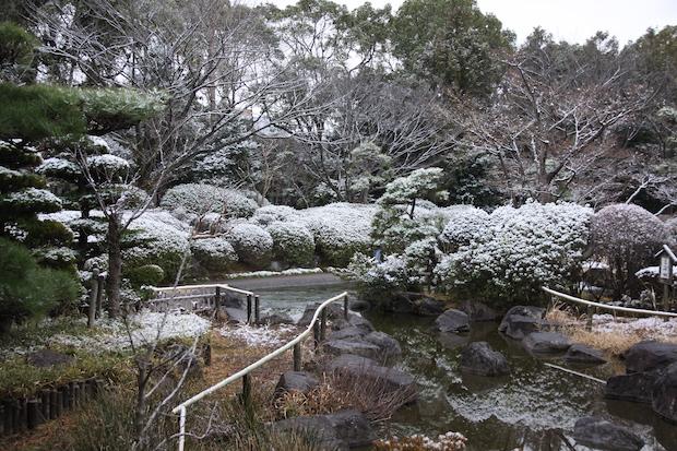 snow__3389.JPG